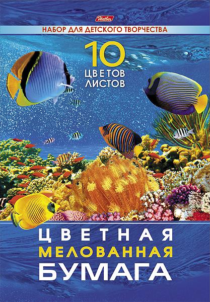 Набор бумаги цветной Мелованной 10л 10 цв. А4ф 195х280мм в папке Подводный мир