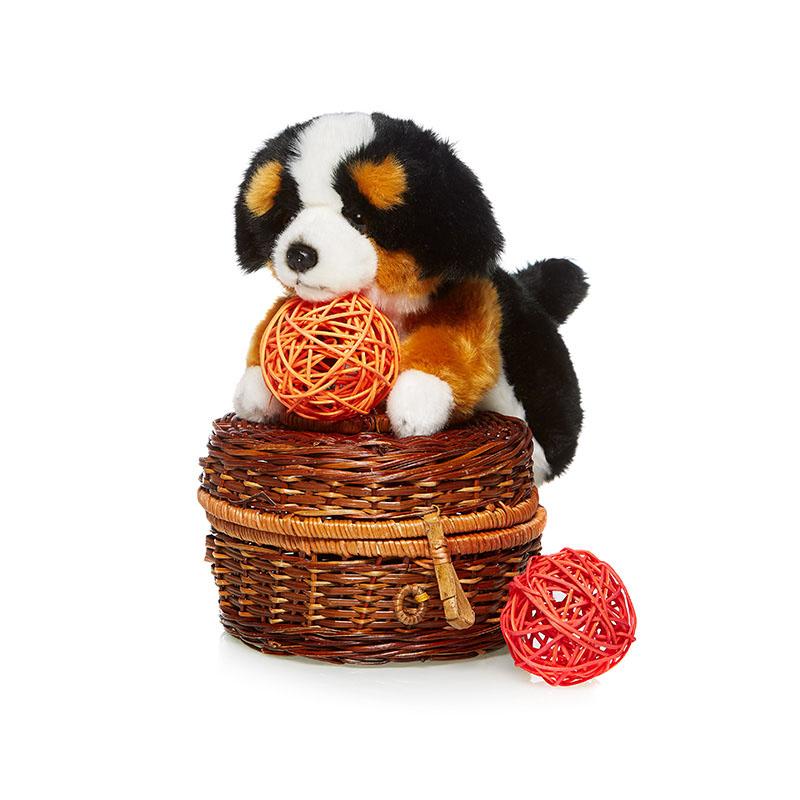 Maxi Toys Мягкая игрушка СенбернарMT-TSC091410-24AИгрушка детская мягконабивная. Выполнена в форме различных животных и сказочных персонажей. Состав: Мех искусственный, трикотажный, волокно полиэфирное, фурнитура из пластмассы. Срок службы 5 лет.