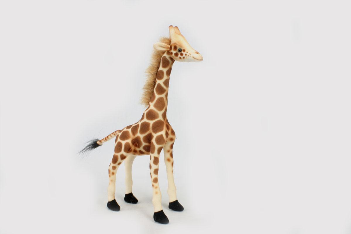 Мягкая игрушка Hansa Жираф, 27 см3731Очаровательная и реалистично смоделированная игрушка Hansa Жираф весьма грамотное сочетание веселья и задора, развлечения и развития, созданное специально для вашего маленького любителя животных. Игрушка очень похожа на своего живого прототипа. Игрушки фирмы Hansa шьются и набиваются вручную, что позволяет достигнуть максимальной реалистичности образа. Данная игрушка выполнена из искусственного меха, специально обработанного для придания схожести с мехом конкретного вида животного. Глаза выполнены из пластика. Красивый экзотический зверек станет главным украшением детской комнаты и положительно повлияет на эмоциональное, чувствительное, тактильное развитие ребенка. Внутри игрушки имеется прочное основание - металлический каркас. Наличие каркаса позволяет изменять положение лап и туловища, а также поворачивать голову. Плотная набивка состоит из искусственного меха, в составе волокон которого не обнаружены аллергические вещества позволит брать игрушку на ночь в...
