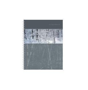 тетрадь А4 120л Панорама, жесткий ламинат (матовый), цвет: серый4601921376494серый