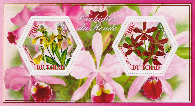 Почтовый блок Орхидеи всего мира №1. Чад, 2014 год401306Почтовый блок Орхидеи всего мира №1. Чад, 2014 год. Размер блока: 8 х 14 см. Размер марок: 4 х 4.5 см. Сохранность хорошая.
