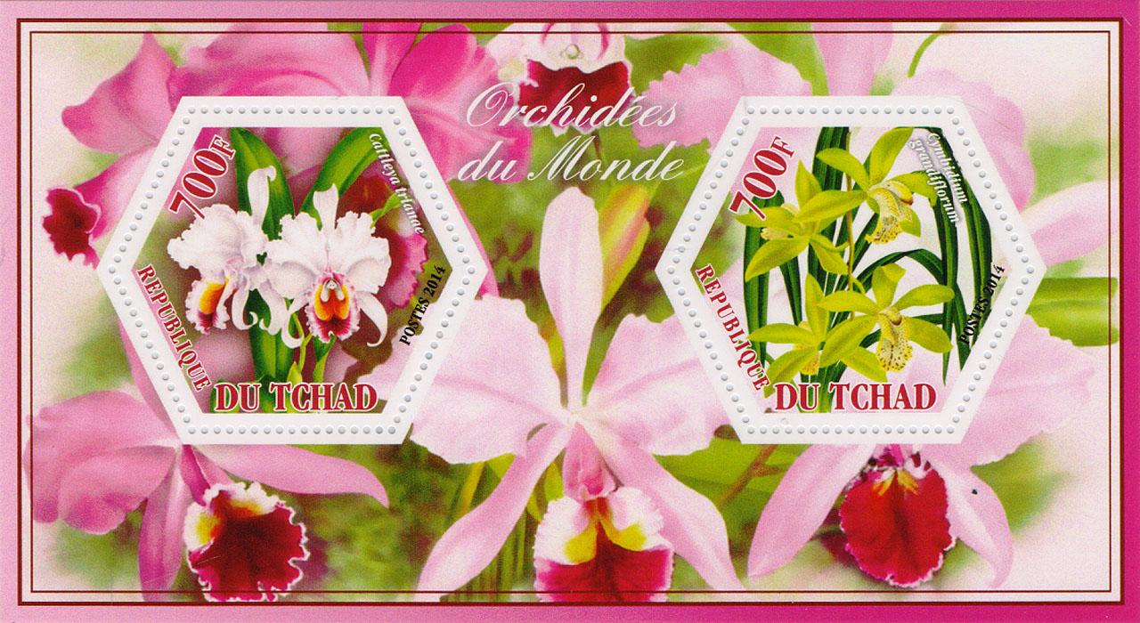 Почтовый блок Орхидеи всего мира №3. Чад, 2014 год401306Почтовый блок Орхидеи всего мира №3. Чад, 2014 год. Размер блока: 8 х 14 см. Размер марок: 4 х 4.5 см. Сохранность хорошая.