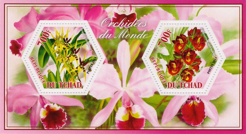 Почтовый блок Орхидеи всего мира №2. Чад, 2014 год401306Почтовый блок Орхидеи всего мира №2. Чад, 2014 год. Размер блока: 8 х 14 см. Размер марок: 4 х 4.5 см. Сохранность хорошая.