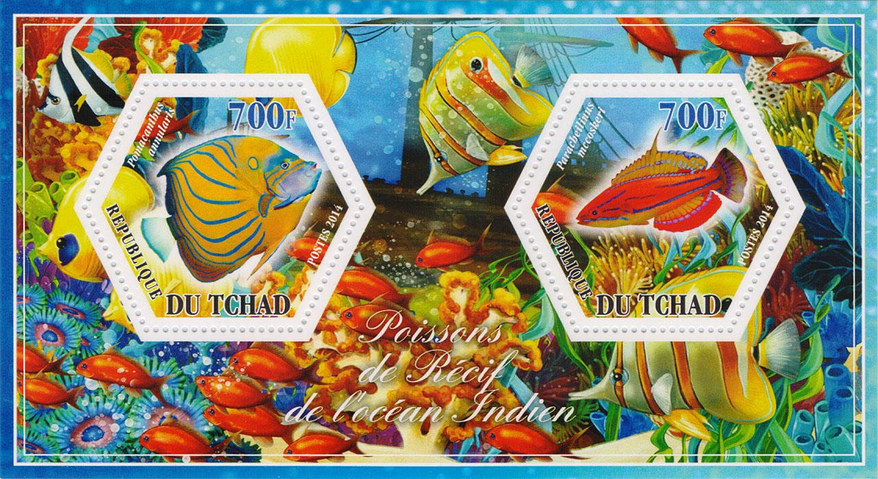 Почтовый блок Рифовые рыбы Индийского океана №2. Чад, 2014 год401306Почтовый блок Рифовые рыбы Индийского океана №2. Чад, 2014 год. Размер блока: 8 х 14 см. Размер марок: 4 х 4.5 см. Сохранность хорошая.