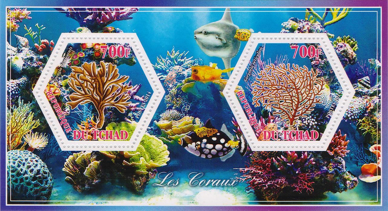 Почтовый блок Кораллы №2. Чад, 2014 год401306Почтовый блок Кораллы №2. Чад, 2014 год. Размер блока: 8 х 14 см. Размер марок: 4 х 4.5 см. Сохранность хорошая.