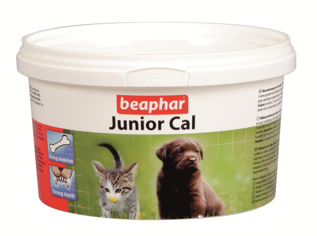 Минеральная смесь Beaphar Junior Cal, для кошек и собак, 200 г13126Минеральная добавка Beaphar Junior Cal предназначена для щенков и котят, растущих собак и кошек, а также других животных c шерстяным покровом. Junior Cal - это смесь минералов, которая обеспечит вашему животному прочный костяк, крепкие зубы и красивую шерсть. Смесь также подходит в качестве укрепляющего препарата для беременных и кормящих животных. Состав: минеральные вещества, молоко и молочные продукты, дрожжи. Анализ: протеин 2,1%, масла и жиры 0,2%, клетчатка 0,12%, зольные компоненты 73%, влага 18%, кальций 24%, фосфор 24%, магний 0,8%. Вес упаковки: 200 г. Товар сертифицирован.
