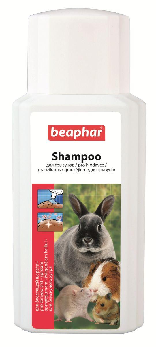 Шампунь для грызунов Beaphar, 200 мл13216Деликатный шампунь Beaphar подходит для мытья кроликов, морских свинок, хомячков, крыс. Шампунь гипоаллергенный и имеет нейтральный показатель РН, поэтому его можно использовать так часто, как необходимо. Шампунь поможет вам сохранять красивую и блестящую шерстку вашего любимца. Он подходит для подготовки зверька к выставкам. Способ применения: намочите шерсть теплой водой и вмассируйте шампунь до появления густой пены. Оставьте на 2-3 минуты, после тщательно смойте водой. Повторите, если необходимо и хорошо высушите. Избегайте попадания в глаза и уши. Объем: 200 мл. Товар сертифицирован.