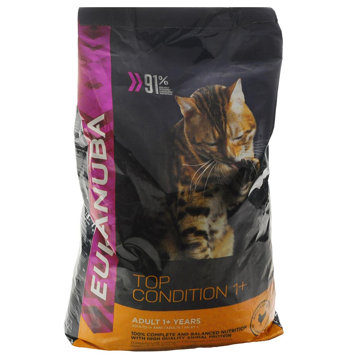 Корм сухой Eukanuba Top Condition для взрослых кошек, с курицей, 10 кг81061294Корм сухой Eukanuba Top Condition - полноценный сбалансированный корм для взрослых кошек с высококачественным животным белком. Не содержит искусственных консервантов и красителей. Корм обеспечивает здоровье по 6- ти ключевым признакам. 1. Надежная защита. Способствует поддержанию иммунной системы за счет антиоксидантов. 2. Оптимальное пищеварение. Способствует здоровой кишечной микрофлоре за счет пребиотиков и клетчатки. 3. Здоровье мочевыводящей системы. Призван обеспечить здоровье мочевыводящих путей. 4. Сильные мышцы. Белки животного происхождения способствуют росту и сохранению мышечной массы (87% животного белка от общего уровня белка). 5. Кожа и шерсть. Способствует развитию здоровой кожи и блестящей шерсти благодаря входящему в состав рыбьему жиру и оптимальному соотношению Омега-6 и Омега-3 жирных кислот. 6. Зубы. Поддерживает здоровье зубов. Состав: сушеное мясо курицы и индейки 43% (куриное мясо: 25%,...