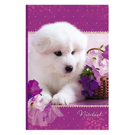 Бизнес блокнот 120л А6 ЕВРО 113х171мм тониров.блок тв.переплет Белый щенок ВАНИЛЬ120ББ6B5_12359