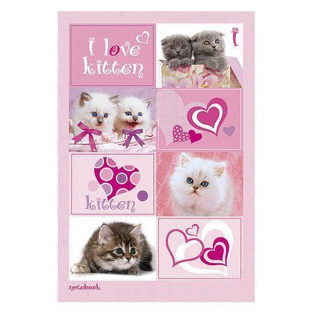 Бизнес блокнот 80л А5ф 144Х208мм тониров.блок тв.переплет I Love kitten ВАНИЛЬ80ББ5B5_06313