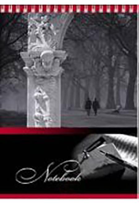 Блокнот 80л А5ф жесткая подложка клетка на гребне серия Ночной город