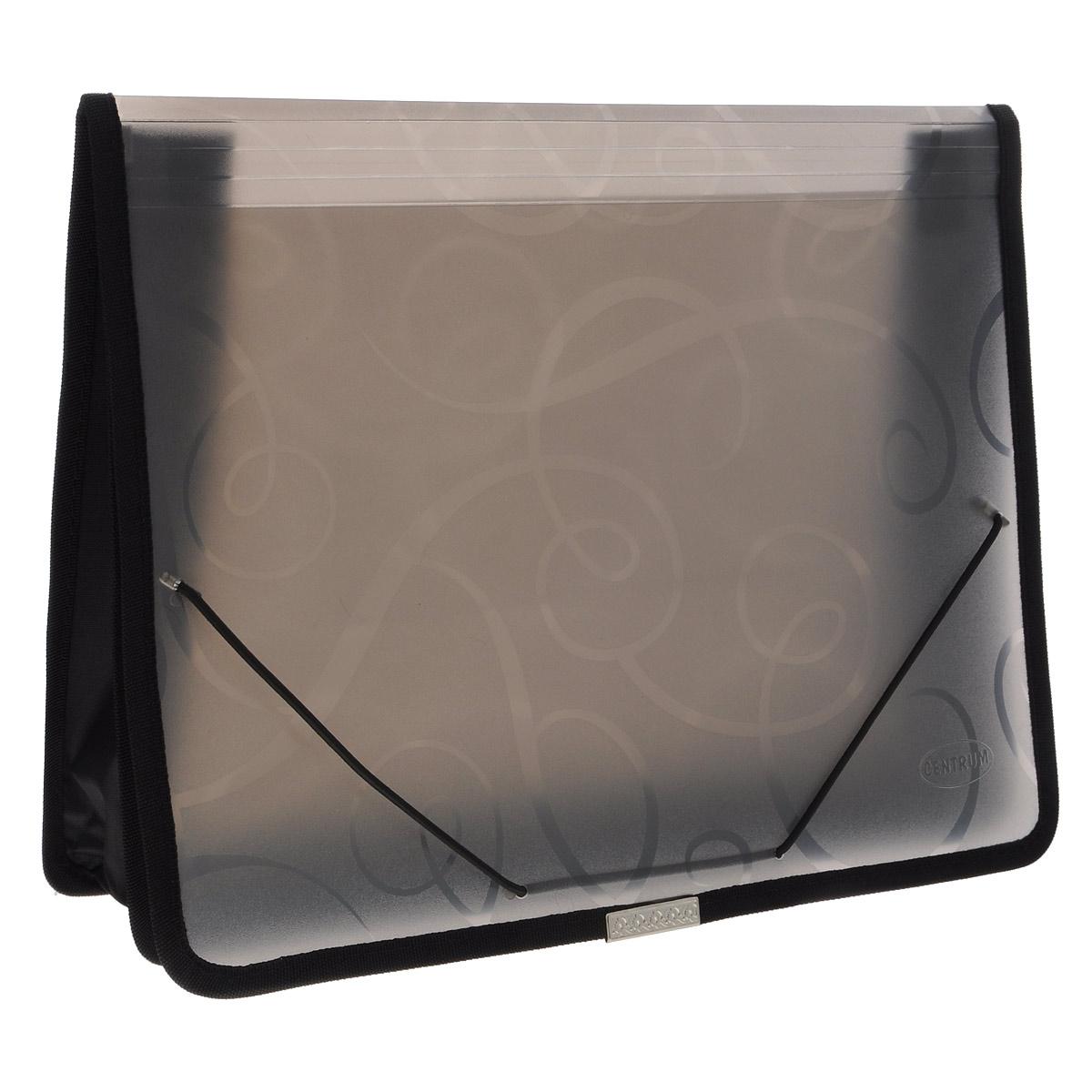 """Папка на резинке """"Centrum"""", 2 отделения, цвет: черный, формат А4 80802"""