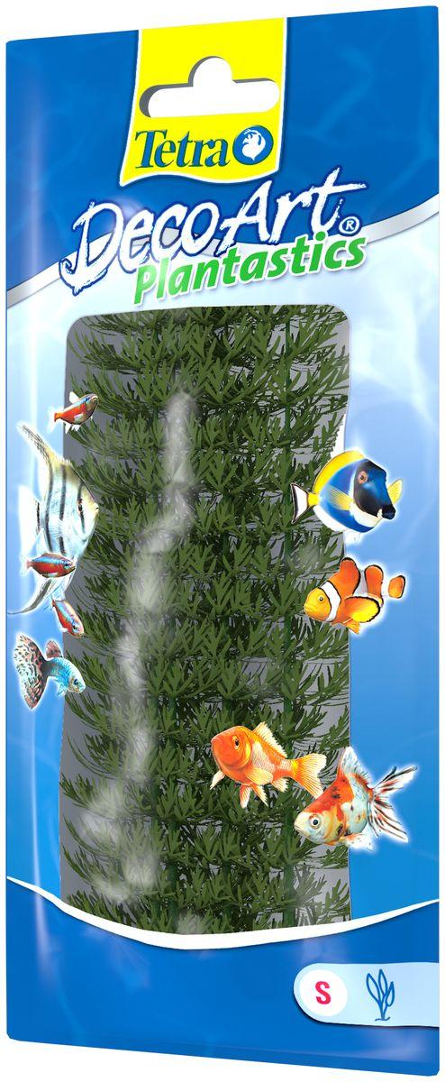 Искусственное растение для аквариума Tetra Амбулия S606890Это растение хорошо подойдет для оформления аквариума. Естественно выглядящее искусственное растение; Для использования в любых аквариумах; Создает отличное место для укрытия (в т.ч. для метания икры); Легко и быстро устанавливается, является абсолютно безопасным; Не требует ухода; Долгое время не теряет форму и окраску. Высота растения: 15 см.