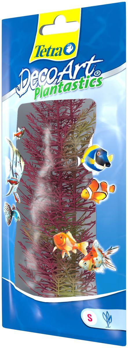 Искусственное растение для аквариума Tetra Перистолистник красный S606937Это растение хорошо подойдет для оформления аквариума. Естественно выглядящее искусственное растение; Для использования в любых аквариумах; Создает отличное место для укрытия (в т.ч. для метания икры); Легко и быстро устанавливается, является абсолютно безопасным; Не требует ухода; Долгое время не теряет форму и окраску. Размер растения: 15 см.