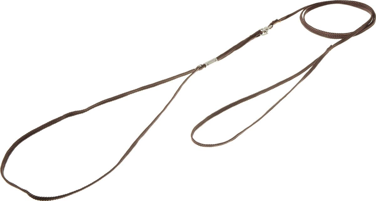 Ринговка V.I.Pet, с кольцом, цвет: коричневый. PEA-03PEA-03BRРинговка V.I.Pet - это специальный поводок, состоящий из петли с фиксатором и, собственно, поводка. Выполнена из нейлона, фурнитура - из высококачественной стали. Ринговка является самым распространенным видом амуниции для показа собаки на выставке или занятий рингдрессурой. Ринговку подбирают в тон окраса собаки, если собака пятнистая - то в тон преобладающего окраса или, наоборот, контрастную.