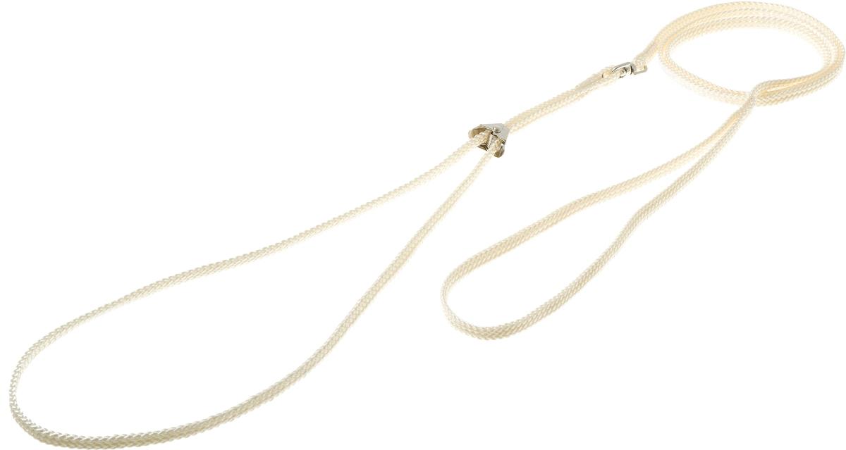 Ринговка V.I.Pet, с прищепкой, цвет: слоновая кость. PEQ-05PEQ-05 IVРинговка V.I.Pet - это специальный поводок, состоящий из петли с фиксатором и, собственно, поводка. Выполнена из нейлона, фурнитура - из высококачественной стали. Ринговка является самым распространенным видом амуниции для показа собаки на выставке или занятий рингдрессурой. Ринговку подбирают в тон окраса собаки, если собака пятнистая - то в тон преобладающего окраса или, наоборот, контрастную.