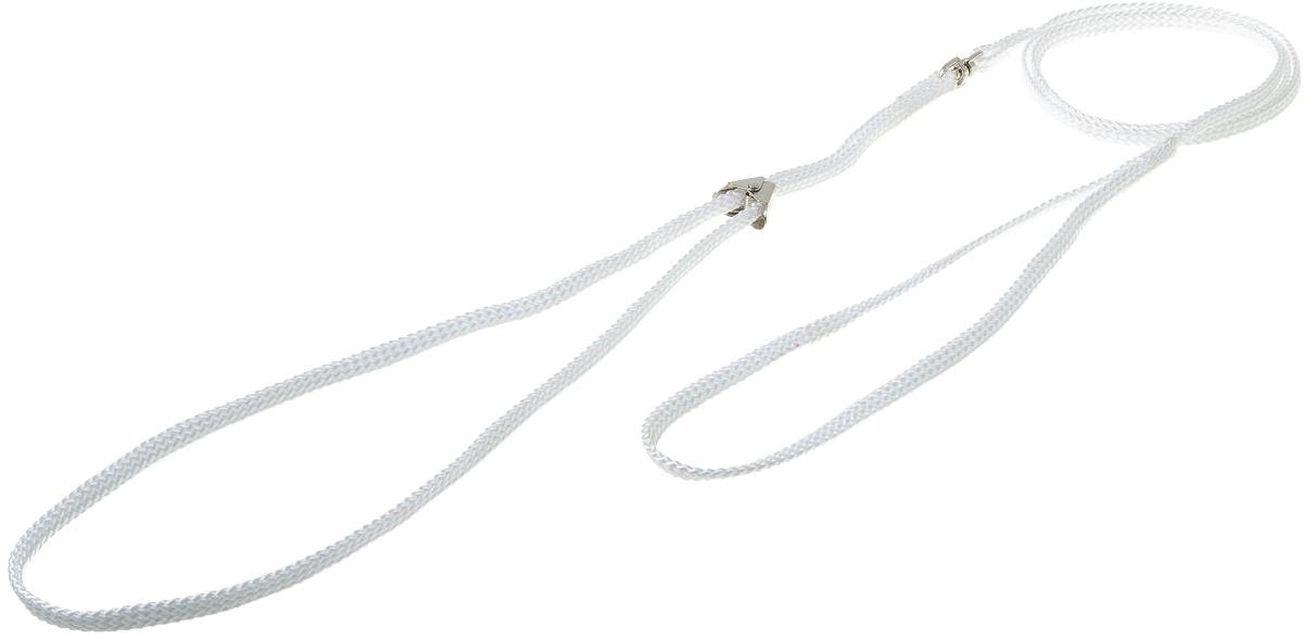 Ринговка V.I.Pet, с прищепкой, цвет: белый. PEQ-05PEQ-05 WРинговка V.I.Pet - это специальный поводок, состоящий из петли с фиксатором и, собственно, поводка. Выполнена из нейлона, фурнитура - из высококачественной стали. Ринговка является самым распространенным видом амуниции для показа собаки на выставке или занятий рингдрессурой. Ринговку подбирают в тон окраса собаки, если собака пятнистая - то в тон преобладающего окраса или, наоборот, контрастную.