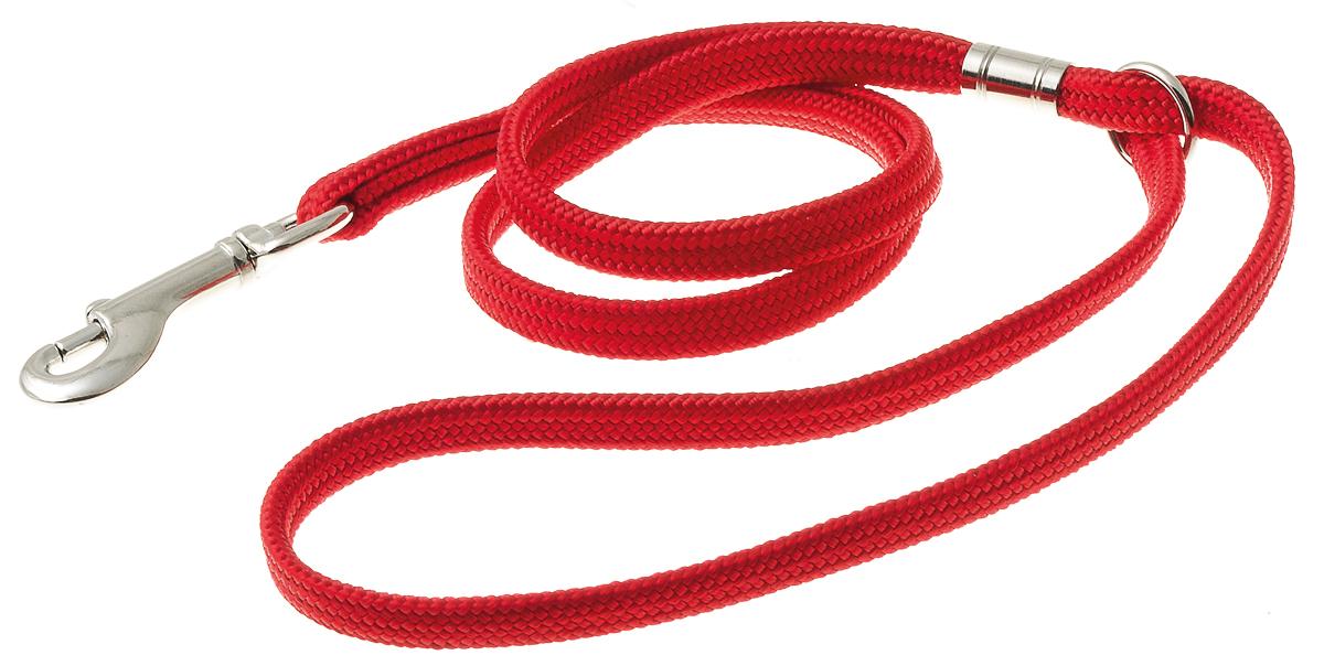 Петля ринговочная V.I.Pet для груминг стойки-кронштейна, с кольцом, цвет: красный, длина 50 смTP15221RПетля ринговочная с кольцом V.I.Pet, изготовленная из нейлона и стали, предназначена для груминг стойки-кронштейна. Подойдет для собак средних и крупных пород. Ринговочная петля фиксируется на кронштейне. Длина: 50 см.