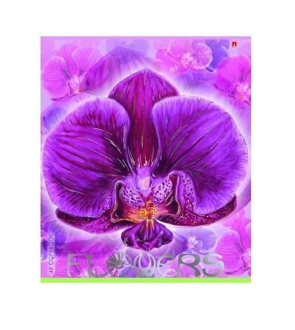 Набор тетрадей Цветочный рай, 48 листов, формат А5, 5 шт7-48-1015Серия Цветочный рай включает пять тетрадей с дизайнерским оформлением. Каждая тетрадь имеет закругленную двойную обложку из экологически чистого картона. Сплошное покрытие лаком придало обложке блеск глянца. Надписи оформлены серебряной фольгой. Внутренний форзац – это нежно-зеленый орнамент из контуров цветочных бутонов. Здесь же находится и поле для личных данных ученика. Блоки толщиной 48 листов сделаны из первосортной бумаги с добавлением эвкалиптовой целлюлозы. Линовка в клетку дополнена красными полями.