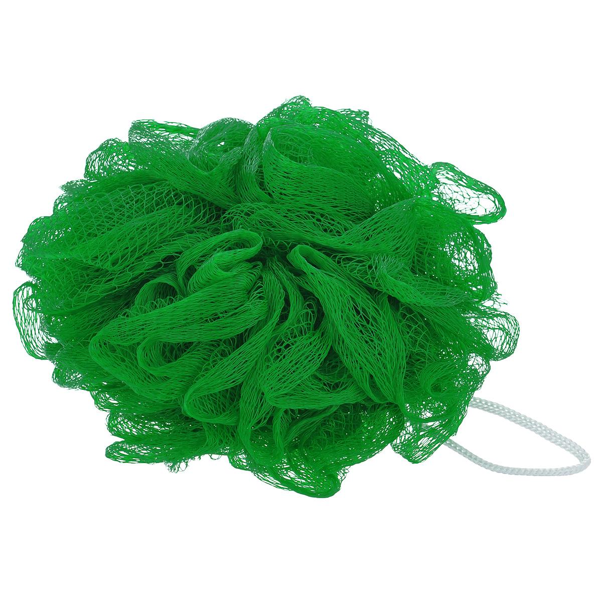 Мочалка массажная Eva Бантик, средней жесткости, цвет: зеленый, диаметр 12 смМС50_зеленыйМочалка Eva Бантик, выполненная из нейлона, станет незаменимым аксессуаром в ванной комнате. Благодаря своему составу она отлично пенится. Мочалка оказывает эффект массажа, тонизирует и очищает кожу. На мочалке имеется удобная петелька для подвешивания. Подходит для всех типов кожи и не вызывает аллергию. Диаметр: 12 см.