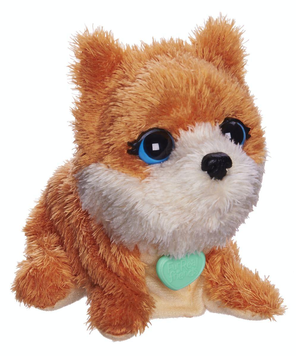FurReal Friends Интерактивная игрушка ЩенокB0698EU4_B1622Ваш ребенок мечтает о красивом маленьком зверьке, но нет возможности исполнить его желание? Анимированная игрушка FurReal Friends Поющие зверята: Щенок приведет в восторг вашего малыша. Приятная на ощупь игрушка выполнена в виде очаровательного щенка с голубыми глазками. При нажатии кнопки на его спинке он поднимает голову и начинает забавно гавкать. Игрушка принесет ребенку много радости и станет верным другом на долгое время. Рекомендуется докупить 2 батарейки напряжением 1,5V типа LR44/AG13/А76 (товар комплектуется демонстрационными).
