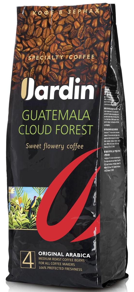 Jardin Guatemala Cloud Forest кофе в зернах, 1 кг0602-8Зерновой кофе Jardin Guatemala Cloud Forest отличается своеобразным вкусом - плотным, с тонкой кислинкой и нотами черной смородины, а также долгим послевкусием. Этот сорт кофе выращивают в Гватемале на плодородных почвах вулканического происхождения, во влажном климате субтропических лесов.
