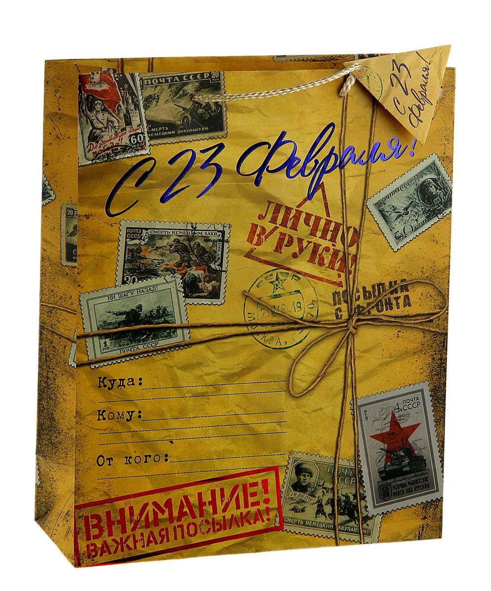Пакет подарочный Sima-land