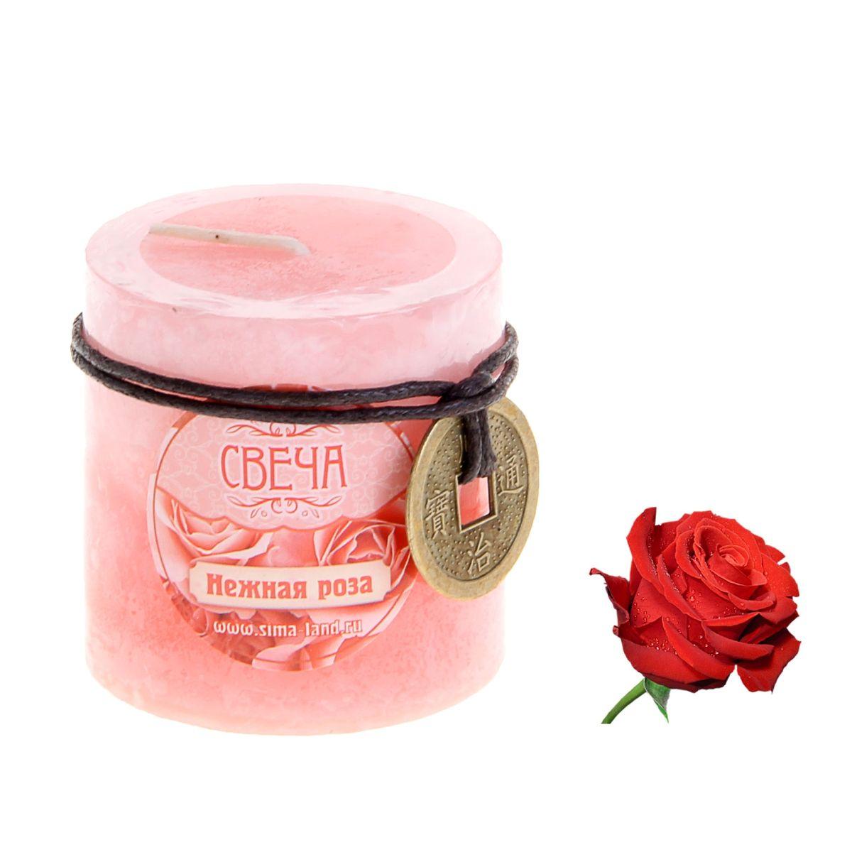 Свеча ароматизированная Sima-land Нежная роза, с монетой, цвет: светло-розовый, розовый, высота 5,5 см907647Свеча Sima-land Нежная роза выполнена из воска в виде столбика. Изделие порадует вас ярким дизайном и приятным ароматом розы, который понравится как женщинам, так и мужчинам. В комплекте - монета на шнурке, декорированная рельефными изображениями иероглифов. Создайте для себя и своих близких незабываемую атмосферу праздника в доме. Ароматическая свеча Sima-land Нежная роза может стать не только отличным подарком, но и гарантией хорошего настроения, ведь это красивая вещь из качественного, безопасного для здоровья материала.