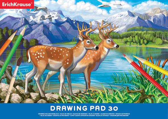 Альбом для рисования Erich Krause, 30 листов, формат А435163Учащиеся технических учебных заведений по достоинству оценят высокое качество этого альбома для черчения. Бумага плотная и устойчива к истиранию. Листы альбома скреплены клеем, обложка выполнена из мелованного картона. Бумага для черчения может также использоваться для карандашных набросков или для рисования акварелью в технике по сухому.