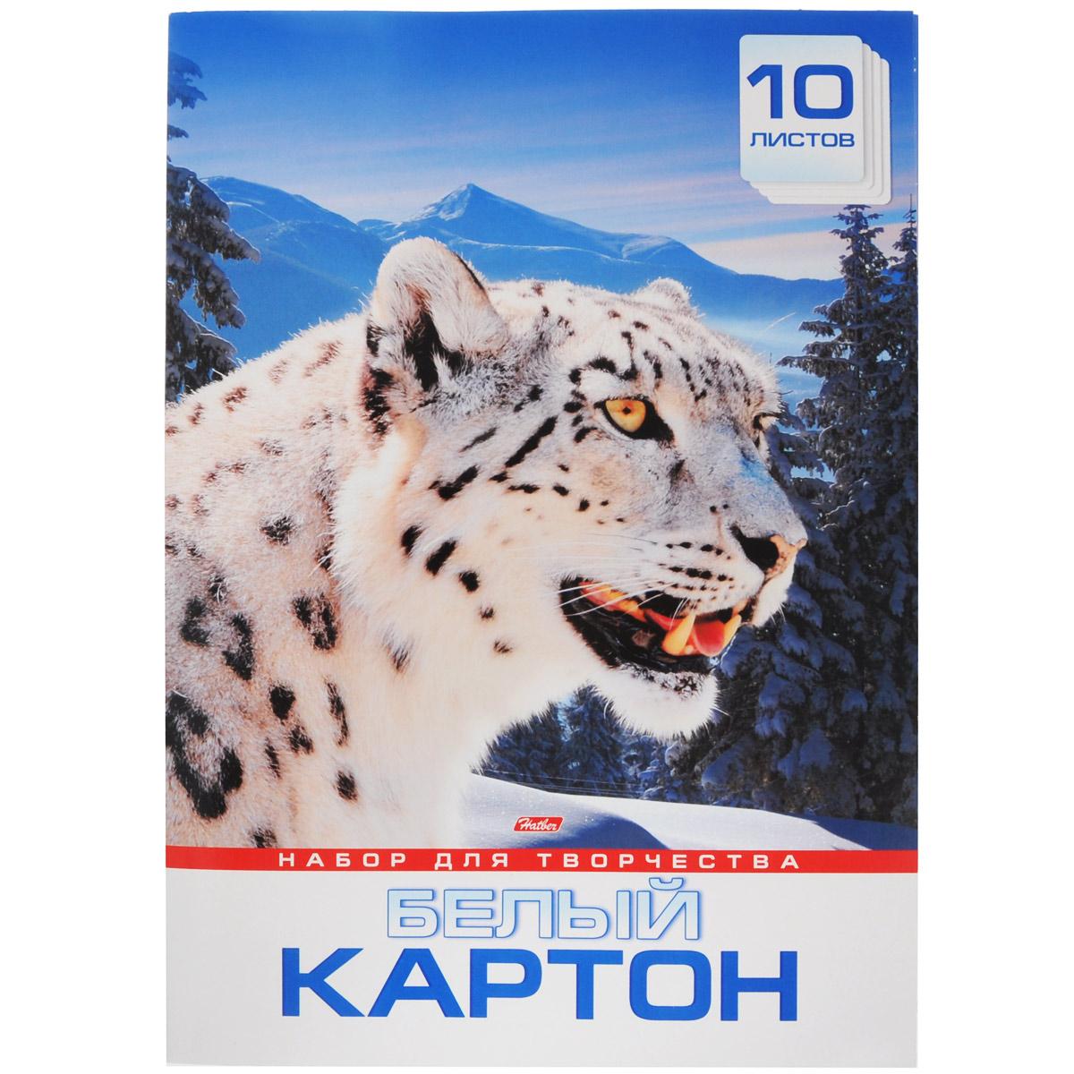 Набор картона Hatber Снежный барс, цвет: белый, формат А3, 10 листов10Кб3_11345Картон Hatber Снежный барс для детского творчества позволит вашему ребенку создавать всевозможные аппликации и поделки. Набор состоит из десяти листов картона. Картон упакован в оригинальную картонную папку, оформленную рисунком с изображением снежного барса. Создание поделок из картона поможет ребенку в развитии творческих способностей, кроме того, это увлекательный досуг. Рекомендуемый возраст: 6+.