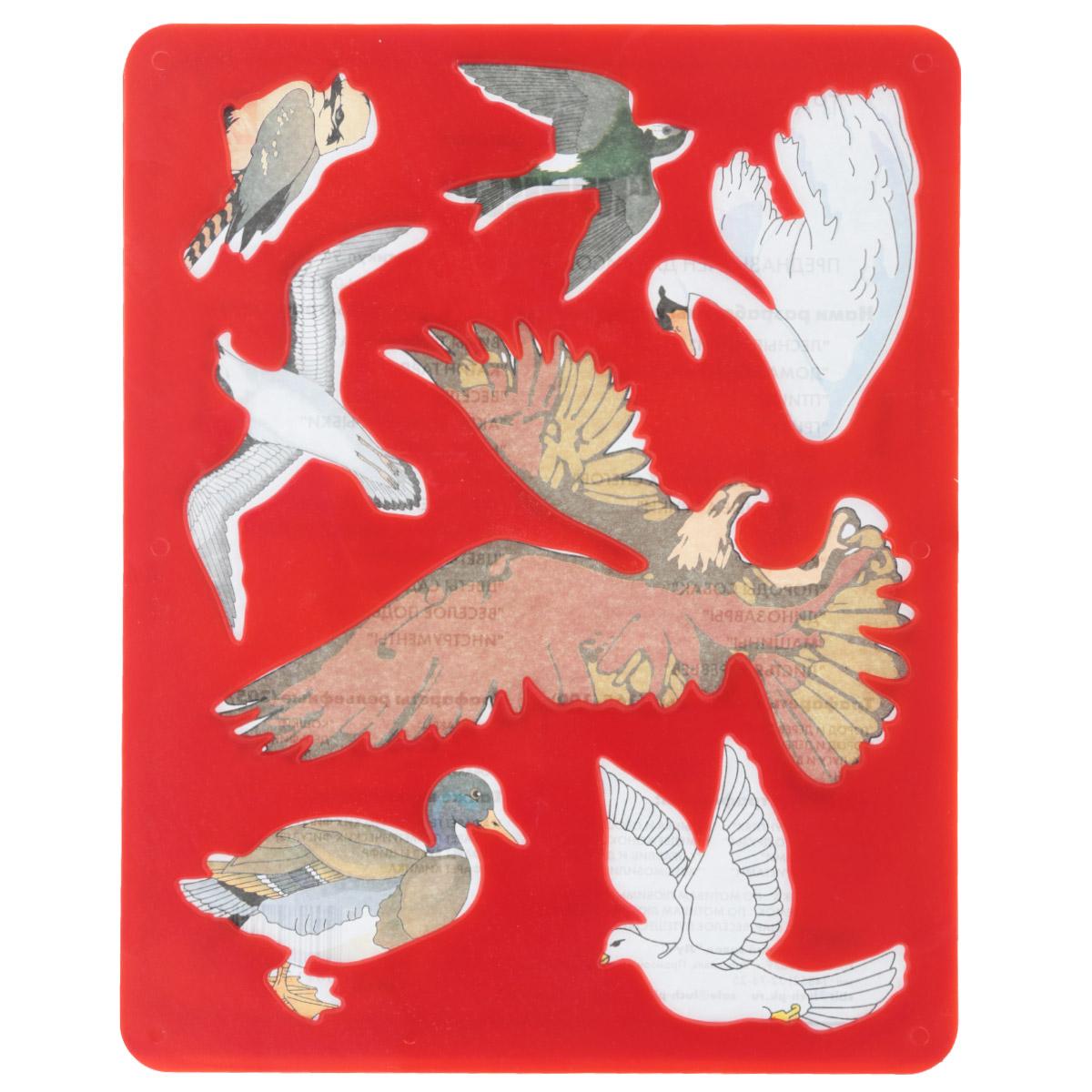 Луч Трафарет прорезной Птицы цвет красный9С 449-08Трафарет Луч Птицы, выполненный из безопасного пластика, предназначен для детского творчества. По трафарету маленькие художники смогут нарисовать и отдельных птиц, и сюжетные картинки. Для этого необходимо положить трафарет на лист бумаги, обвести фигуру по контуру и раскрасить по своему вкусу или глядя на цветную картинку-образец. Трафареты предназначены для развития у детей мелкой моторики и зрительно-двигательной координации, навыков художественной композиции и зрительного восприятия.