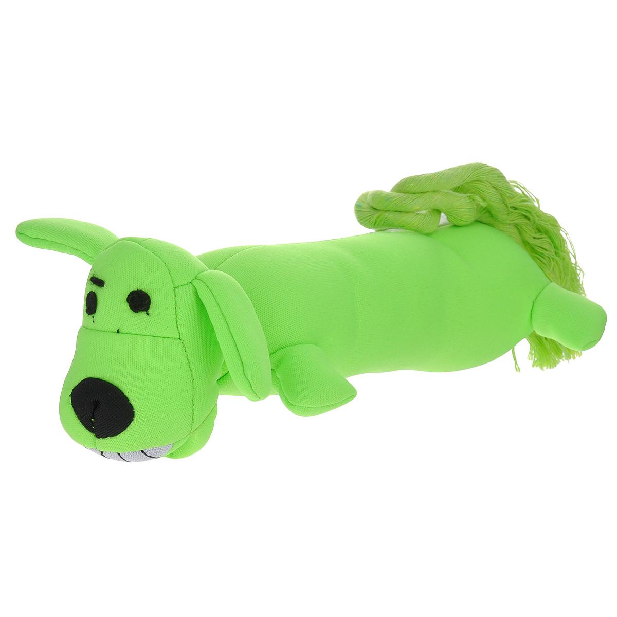 Игрушка для собак Multipet Летающая собака, с резинкой, цвет: салатовый12-47838_салатовыйИгрушка Multipet Летающая собака изготовлена из прочного и долговечного полиэстера, который легко моется, особо устойчив к разгрызанию. Необычная и забавная игрушка уникальна тем, что при помощи резинки, петли и канатного хвоста с легкостью запускается на дальние расстояния для апортировки. Подойдет для всех пород собак.