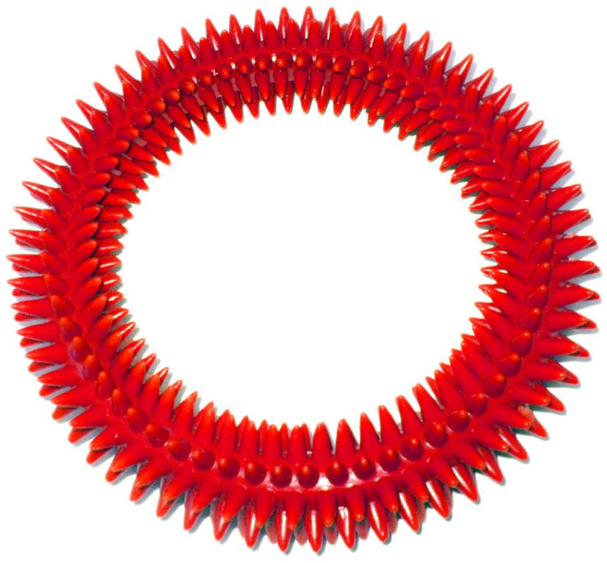 Кольцо массажное с шипами V.I.Pet, цвет: красный, диаметр 16 см05016_красныйМассажное кольцо с шипами V.I.Pet предназначено для собак. Прочная игрушка выполнена из пластика с использованием только безопасных, не токсичных красителей. Отлично подходит для игры с собакой, во время которой будет происходить массаж и укрепление десен вашего питомца. Как и в случае с любой другой игрушкой для животных, присматривайте за собакой во время игры. Диаметр: 16 см. Товар сертифицирован.