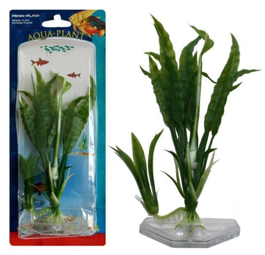 Растение FLOWERING CRYPT 22см зеленое. КРИПТОКОРИНАP5MРаспространение: Шри-Ланка. Использование: популярное аквариумное растение переднего и среднего плана.