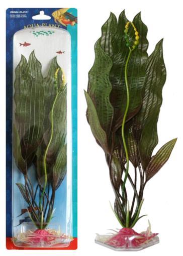 Растение FLOWERING LACE 27см зеленое. УВИРАНДРАP7LРаспространение:МАДАГАСКАР. Использование: эффектное аквариумное растение среднего и заднего плана.