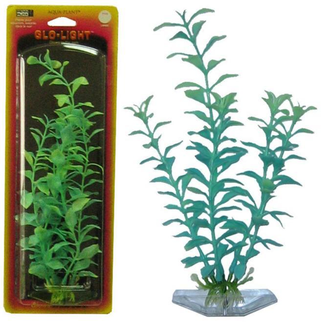 Растение BLOOMING LUDWIGIA 27см сине-зеленое светящееся. ЛЮДВИГИЯP12LGLРаспространение: Серевная Америка. Использование: эффектный светящийся вариант популярного растения.