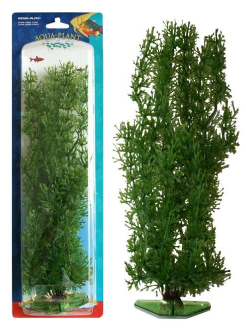 Растение STONEWORT-NITELLA 18см зеленое. БЛЕСТЯНКАP14SРаспространение: Азия, Европа. Использование: в аквариуме растение размещается группами.