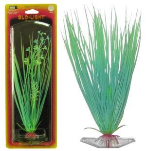 Растение HAIRGRASS 22см сине-зеленое светящееся. ЭЛЕОХАРИСP16MGLРаспространение: Серевная Америка. Использование: эффектный светящийся вариант популярного растения.