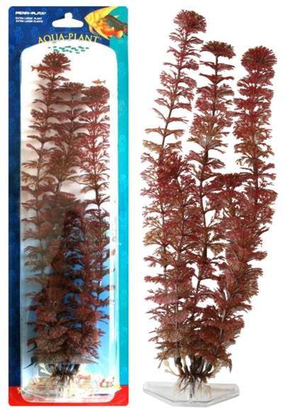 Растение RED AMBULIA 18см красное. АМБУЛИЯP18RSРаспространение: Юго-Восточная Азия. Популярное аквариумное растение среднего и заднего плана. Декоративный красно-коричневый вариант растения.