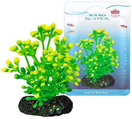 Растение CAULERPA 7см с грузом желто-зеленое. КАУЛЕРПАFIPP-0107Распространение: тропические моря. Использование: эффектны вариант водоросли для переднего плана.