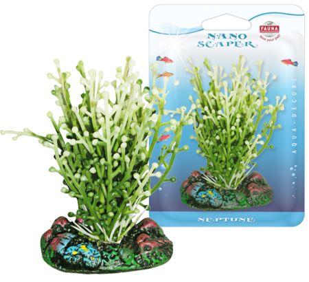Растение CAULERPA 7см с грузом бело-зеленое. КАУЛЕРПАFIPP-0110Распространение: тропические моря. Использование: эффектны вариант водоросли для переднего плана.
