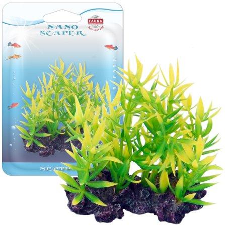 Растение NESAEA 10см с грузом красно-зеленое. НЕЗЕЯFIPP-0118Распространение: Зап. Африка. Использование: красно-зеленое растение переднего плана.