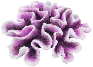 Декорация КОРАЛЛ 19х18х7,5см бело-фиолетовыйFIAD-1166Красочный пластиковый коралл. Комбинации из различных кораллов создают в аквариуме пеструю и причудливую картину морского дна. Красочная упаковка.