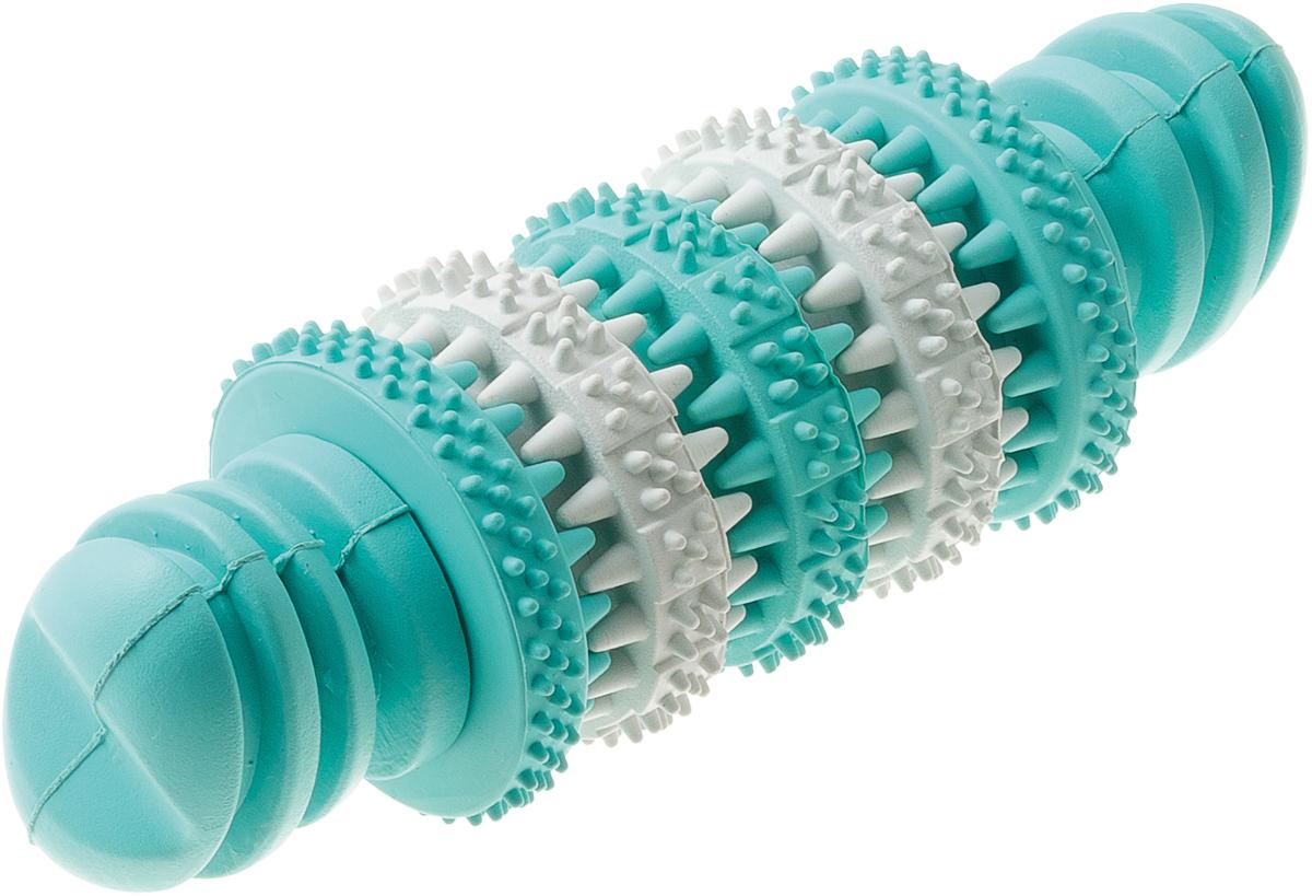 Игрушка резиновая с запахом мяты для чистки зубов Кость средняя 15 см 1311613116