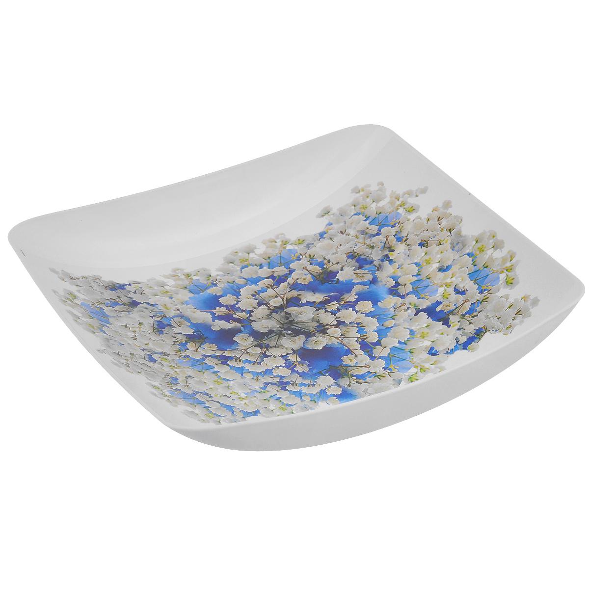 Блюдо Idea Голубые цветы, 24 х 25 смМ 1334Блюдо Idea Голубые цветы, выполненное из высококачественного полипропилена, непременно придется вам по вкусу и добавит красок в интерьер вашей кухни. Блюдо квадратной формы, оформленное изображением в виде роз, будет прекрасно смотреться на столе и порадует функциональностью. Блюдо Idea Голубые цветы не только украсит ваш стол и подчеркнет вкус хозяйки, но и станет отличным подарком к любому празднику.