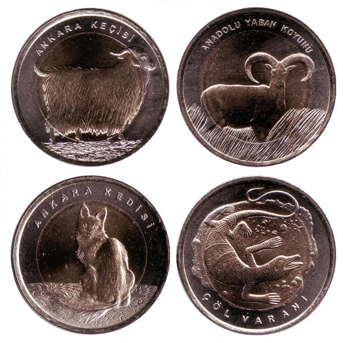 Годовой набор из 4 монет номиналом 1 лира Животные. Турция. 2015 год725Состояние монет: UNC. Диаметр монет: 26 мм. Вес каждой монеты: 8,6 гр. Материал монет: кольцо – медно-никелево-цинковый сплав, вставка – латунь. В набор входит 4 монеты: 1. Ангорская коза. 2. Турецкая ангора. 3. Варан. 4. Дикий баран.