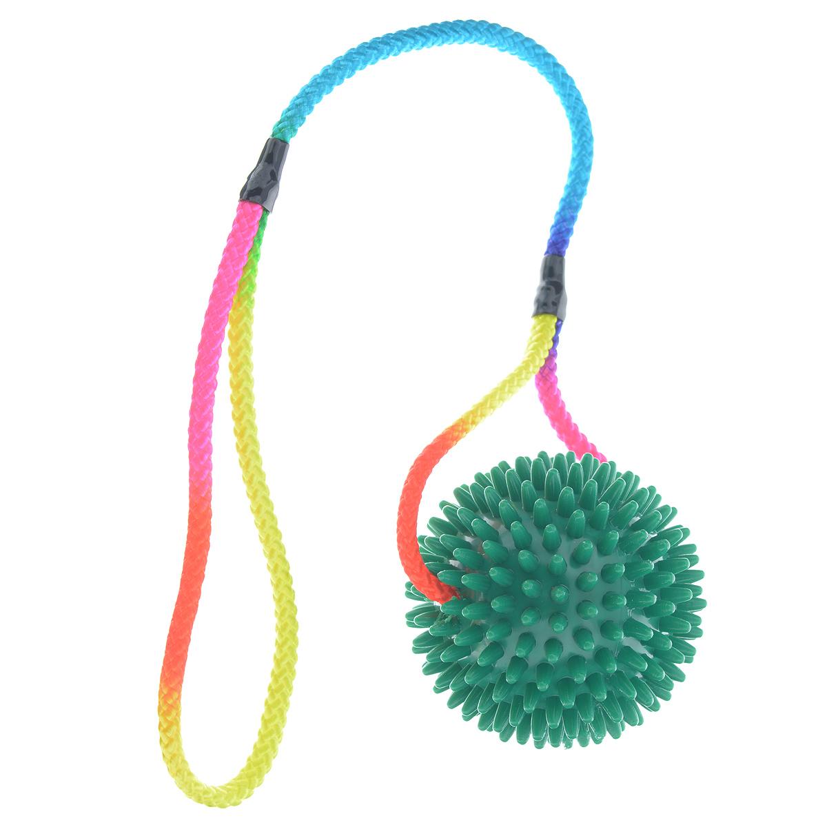 Игрушка для собак V.I.Pet Массажный мяч, на шнуре, цвет: зеленый, диаметр 9 см770950_зеленыйИгрушка для собак V.I.Pet Массажный мяч, изготовленная из ПВХ, предназначена для массажа и самомассажа рефлексогенных зон. Она имеет мягкие закругленные массажные шипы, эффективно массирующие и не травмирующие кожу. Сквозь мяч продет шнур. Игрушка не позволит скучать вашему питомцу ни дома, ни на улице. Диаметр: 9 см. Длина шнура: 50 см.