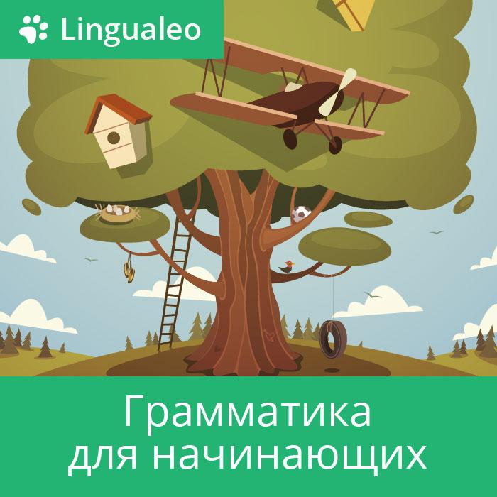 LinguaLeo. Грамматика для начинающих