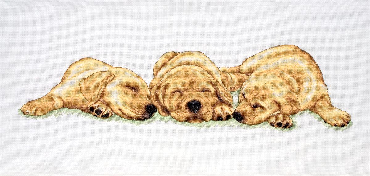 Набор для вышивания Anchor Sleeping Labradors /Спящие лабрадоры/ 18*47см (состав: канва Aida 16, цветная схема, нитки Anchor, игла, инструкция), счетный крестPCE726Набор для вышивания Anchor Sleeping Labradors /Спящие лабрадоры/ 18*47см (состав: канва Aida 16, цветная схема, нитки Anchor, игла, инструкция), счетный крест