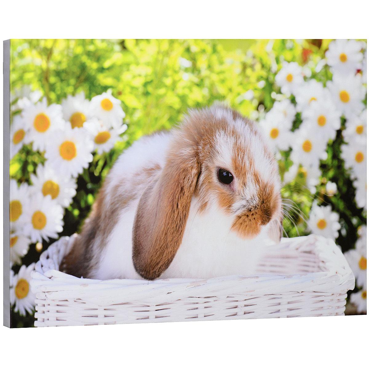 КвикДекор Картина на холсте Кролик в белой корзинке, 60 см х 40 смAP-00749-15743-Cn6040Картина на холсте КвикДекор Кролик в белой корзинке автора Грега Каддифорда дополнит обстановку интерьера яркими красками и необычным оформлением. Изделие представляет собой картину с латексной печатью на натуральном хлопчатобумажном холсте. Галерейная натяжка холста на подрамники выполнена очень аккуратно, а боковые части картины запечатаны тоновой заливкой. Обратная сторона подрамника содержит отверстие, благодаря которому картину можно легко закрепить на стене и подкорректировать ее положение. Грег - один из известнейших представителей жанра анималистической фотографии. Его снимки используют по всему миру в календарях, на открытках, канцелярских принадлежностях, в книгах и журналах. Его коллекция насчитывает сотни восхитительных и милых образов животных. Все работы этого фотографа необычайно гармоничны и сбалансированы. Картина Кролик в белой корзинке отлично подойдет к интерьеру не только детской комнаты, но и гостиной. Картина поставляется в...
